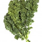 Kale Isolated