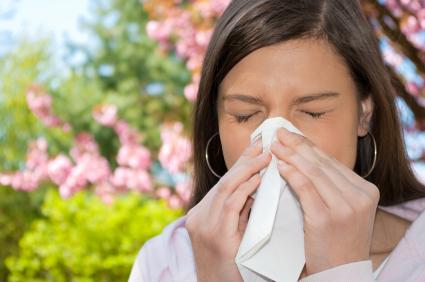 allergy ירחוני 2017