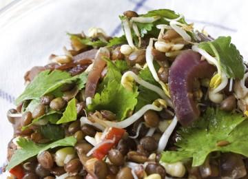 תזונה צמחונית וטבעונית חכמה