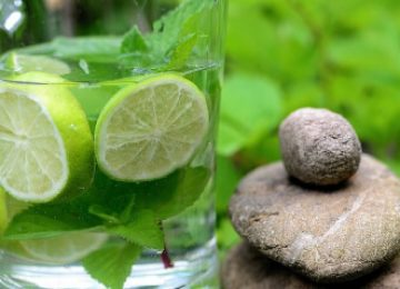 מחלות וצמחי מרפא